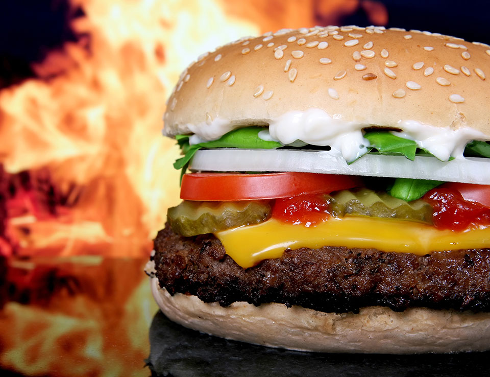Fast Food Calorie Counter - Hamburgers