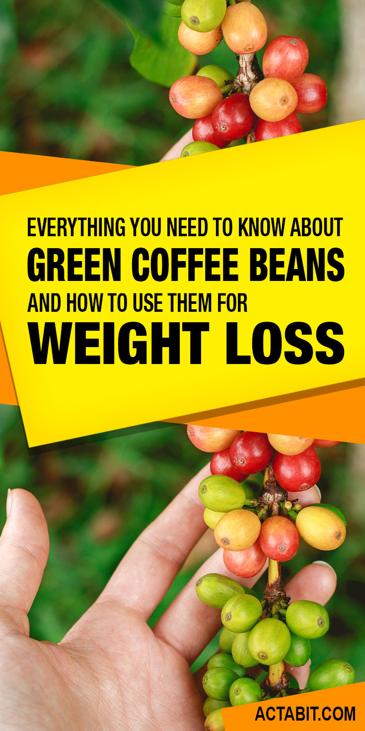 Everything you need to know about green coffee been extract and its use for weight loss.