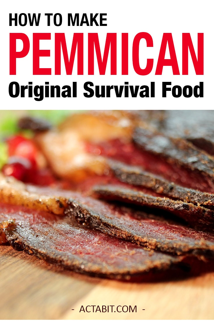 Pemmican, the original survival food of Native Americans