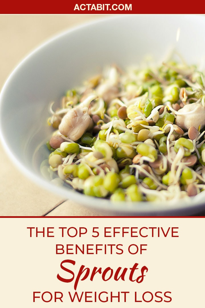 Sprouts offer a myriad of health benefits. They are high in fiber and vitamins, but this is not the main reason why they are so good for weight loss. Find out how eating sprouts helps you lose weight.