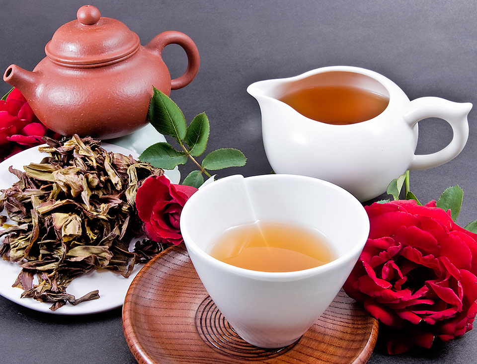 Green Tea and Weight Loss: The Latest Research