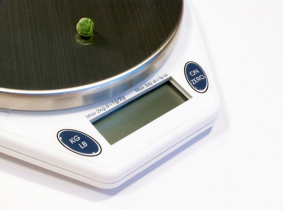 Low-Calorie Diets for Weight Loss: Are They Healthy?