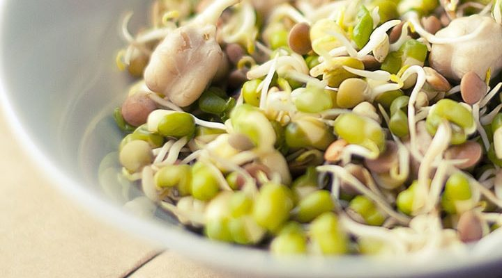 5 Effective Benefits of Sprouts for Weight Loss and Health